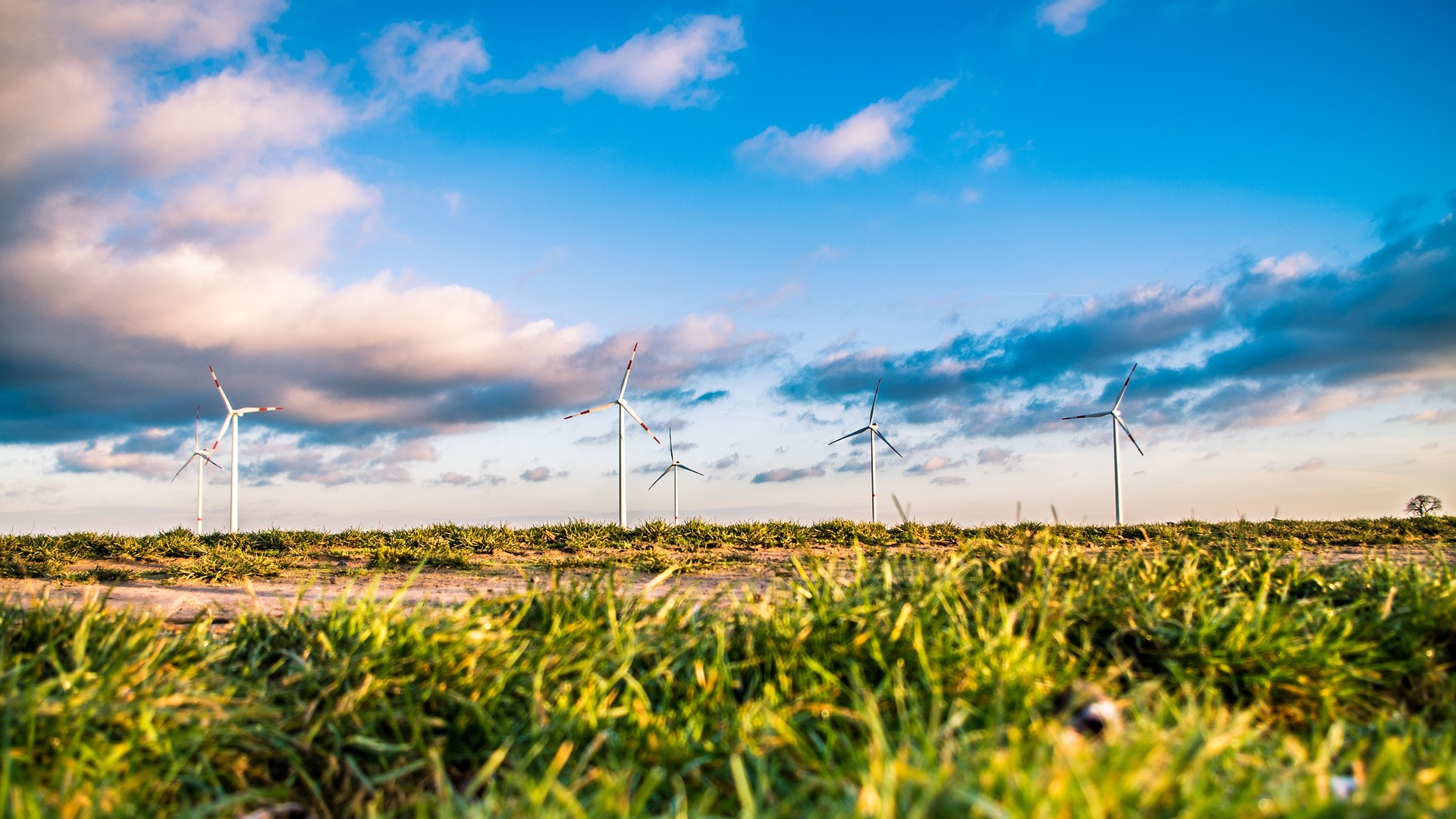 MEMBER NEWS: Vattenfall to build UK's largest onshore wind farm in Scotland